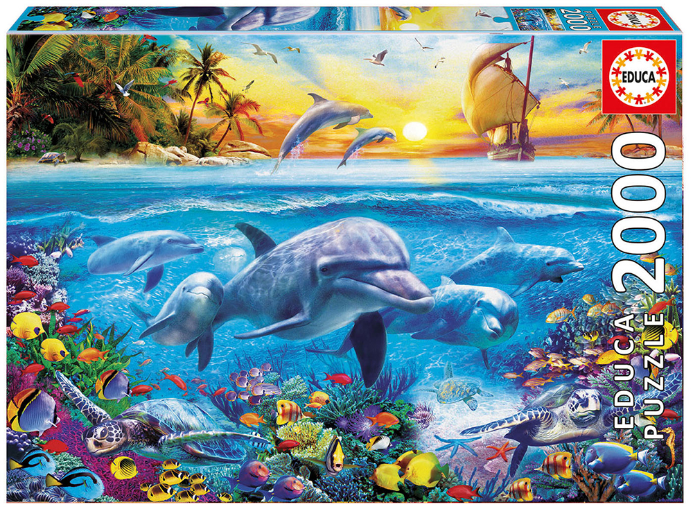 2000 pieces puzzle - Family of Dolphins