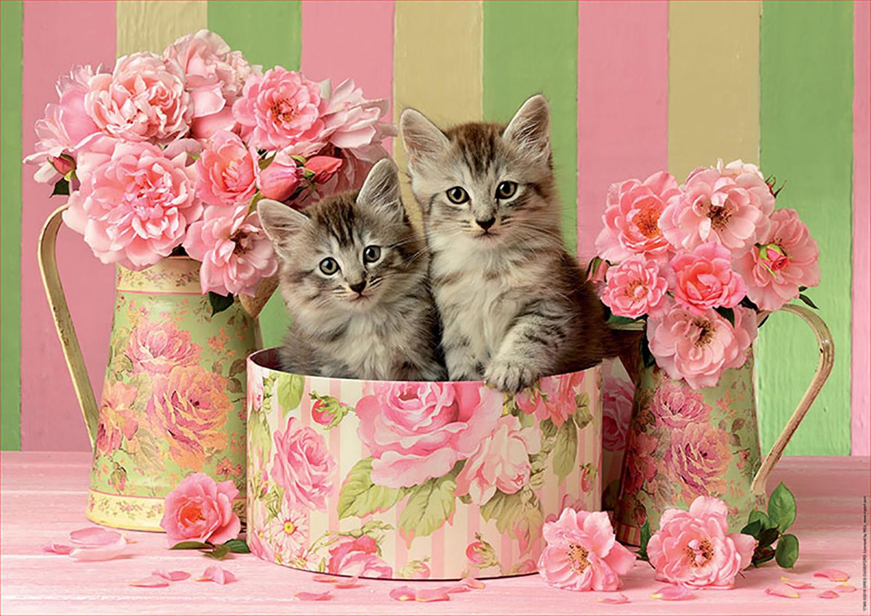 Casse-tête 500 pièces Chatons Avec Des Roses